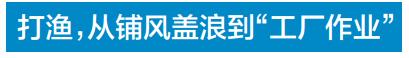 http://www.reviewcode.cn/yunweiguanli/152726.html
