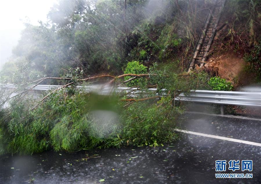 """(环境)(3)台风""""米克拉""""登陆福建"""