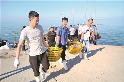 王雷涉黑组织覆灭后,潍坊海域恢复了正常的渔业生产秩序。图为潍坊市滨海区渔民正在将刚捕捞的梭子蟹搬运上岸。 胡骁 摄